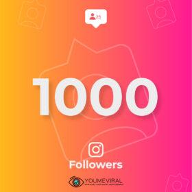 Buy 1000 Instagram Followers Cheap