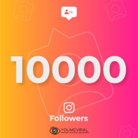 Buy 10000 Instagram Followers Cheap