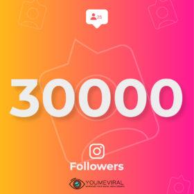 Buy 30000 Instagram Followers Cheap