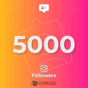 Buy 5000 Instagram Followers Cheap