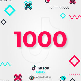 Buy 1000 TikTok Followers (Fans) Cheap
