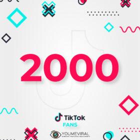 Buy 2000 TikTok Followers (Fans) Cheap