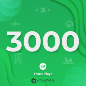 Buy 3000 Spotify Plays - Track Cheap