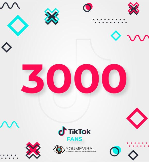 Buy 3000 TikTok Followers (Fans) Cheap