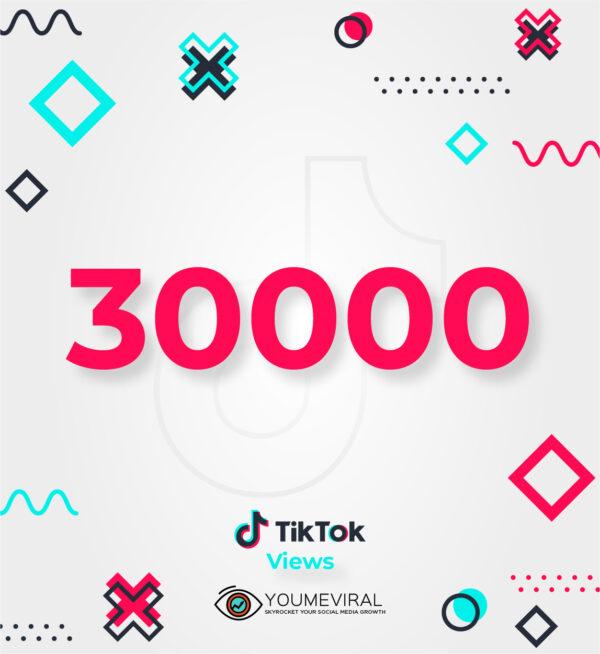 Buy 30000 TikTok Views Cheap