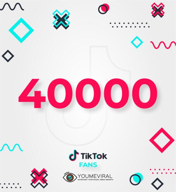 Buy 40000 TikTok Followers (Fans) Cheap