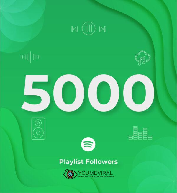 Buy 5000 Spotify Followers - Playlist Cheap