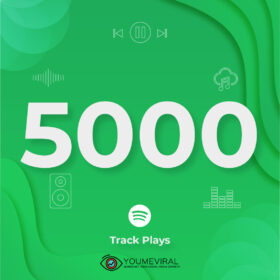 Buy 5000 Spotify Plays - Track Cheap
