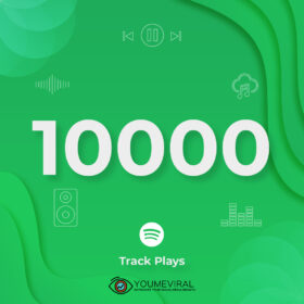 Buy 10000 Spotify Plays - Track Cheap