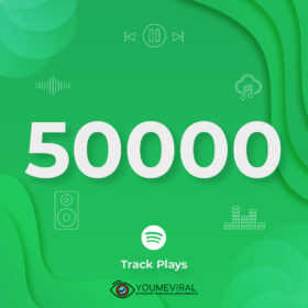Buy 50000 Spotify Plays - Track Cheap