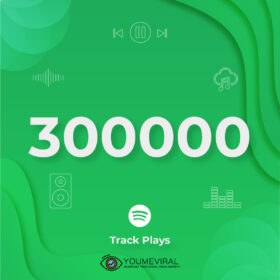 Buy 300000 Spotify Plays - Track Cheap