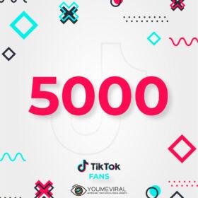 Buy 5000 TikTok Followers (Fans) Cheap