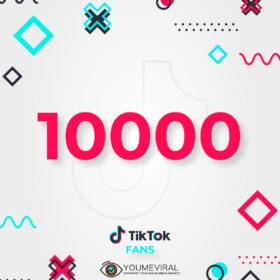 Buy 10000 TikTok Followers (Fans) Cheap