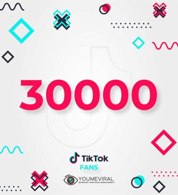 Buy 30000 TikTok Followers (Fans) Cheap