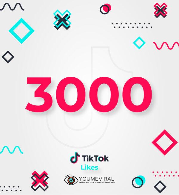 Buy 3000 TikTok Likes Cheap