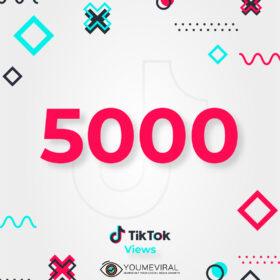 Buy 5000 TikTok Views Cheap